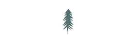 Nicole Alex Photography | Ontario Wedding & Elopement Photographer